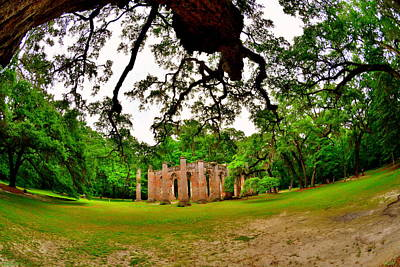 Photograph - Majestic Oaks At Old Sheldon Church Ruins by Lisa Wooten