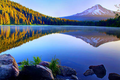 Majestic Reflection Original by John Absher