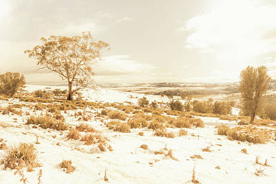 Snowy Scene Wall Art - Photograph - Majestic Scenes From Snowy Tasmania by Jorgo Photography - Wall Art Gallery
