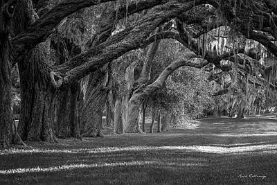Photograph - Majestic Shade St Simons Island Live Oak Art by Reid Callaway