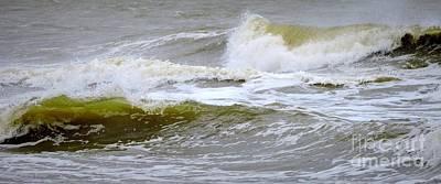Photograph - Majestic Waves by Shelia Kempf