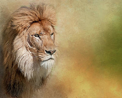 Photograph - Majesty by Brian Tarr