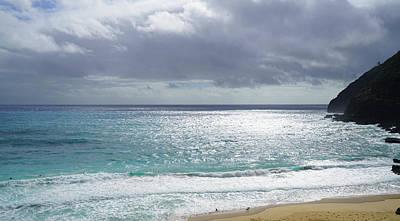 Hawaii Dog Photograph - Makapuu Beach Oahu Hawaii by Kevin Smith