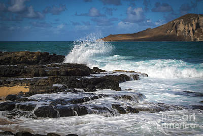 Photograph - Makapuu Oahu by Mitch Shindelbower