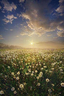Photograph - Make A Wish by Phil Koch