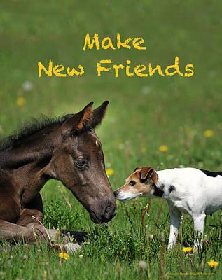 Make New Friends Art Print