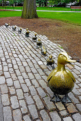Photograph - Make Way For Ducklings Study 1 by Robert Meyers-Lussier