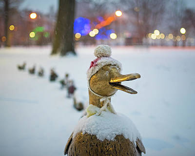 Photograph - Make Way For Ducklings Winter Hats Boston Public Garden Christmas by Toby McGuire