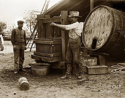 Photograph - Making Wine Old Wine Press Circa 1905 by California Views Mr Pat Hathaway Archives