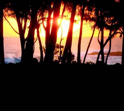 Photograph - Maku'u Dawn by Chuck Snyder