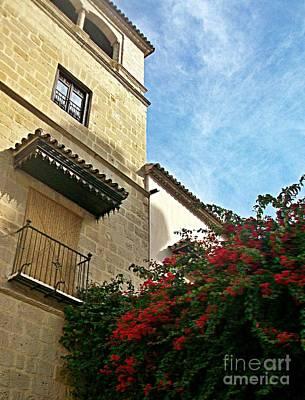 Photograph - Malaga-2010-18 by Rezzan Erguvan-Onal