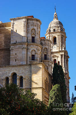Photograph - Malaga Cathedral by Lutz Baar