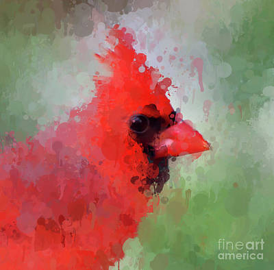 Photograph - Male Cardinal - Paint Splatter by Kerri Farley