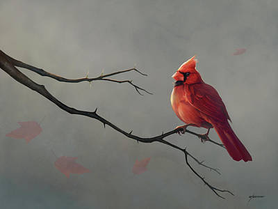 Digital Art - Male Cardinal by Steve Goad