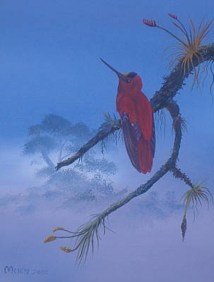 Michael Allen Painting - Male Firecrown by Michael Allen
