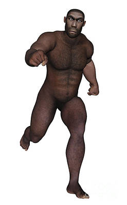 Indigenous Culture Digital Art - Male Homo Erectus Running by Elena Duvernay
