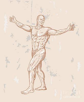 Muscular Digital Art - Male Human Anatomy by Aloysius Patrimonio