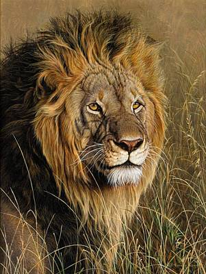 Painting - Male Lion by Alan M Hunt