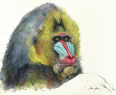 Ape Wall Art - Painting - Male Mandrill by Juan Bosco