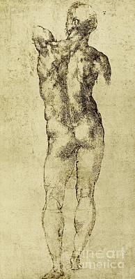 Homoerotic Drawing - Male Nude by Michelangelo