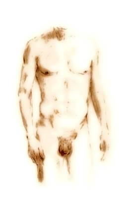 Digital Art - Male Nude Torso I by G Linsenmayer