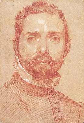 Drawing - Male Portrait - The Lutenist Mascheroni by Annibale Carracci