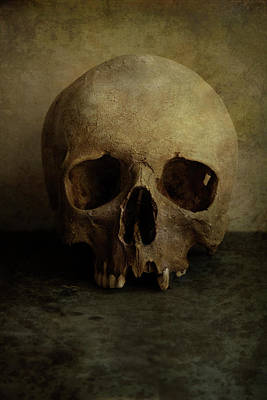Photograph - Male Skull In Retro Style by Jaroslaw Blaminsky
