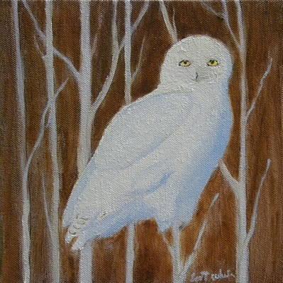 Male Snowy Owl Portrait Art Print