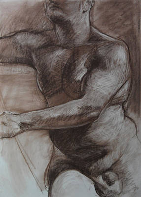 Drawing - Male Torso by Harry Robertson