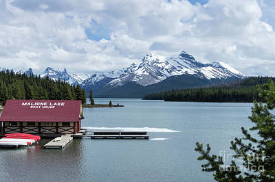 Photograph - Maligne Lake by Louise Magno