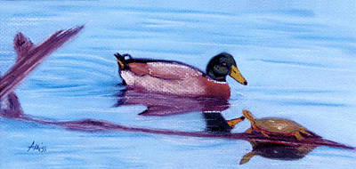 Pastel - Mallard And Turtle by Jan Amiss