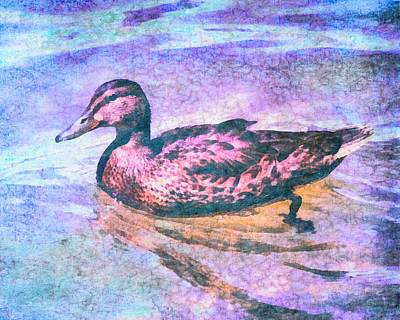 Digital Art - Mallard Duck Art by Priya Ghose