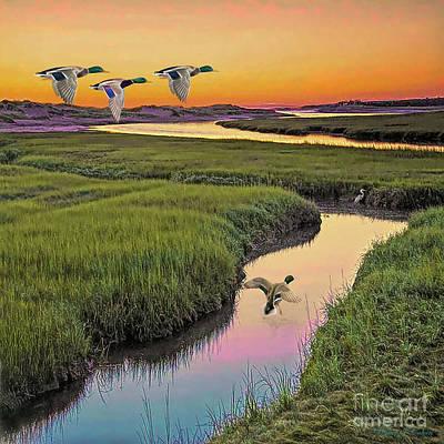 Digital Art - Mallard Ducks by Walter Colvin