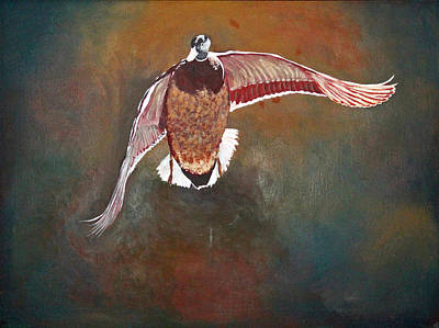 Painting - Mallard In Flight by Lawrence Holofcener