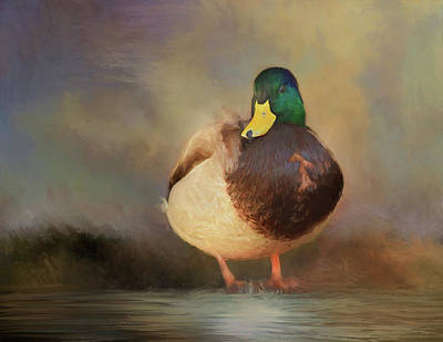 Mixed Media - Mallard by Steven Richardson