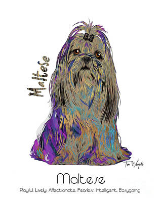 Digital Art - Maltese Pop Art by Tim Wemple