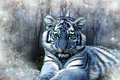 Tiger Cub Digital Art - Maltese Tiger by Julie L Hoddinott