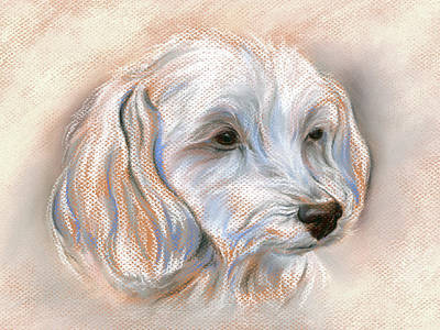 Pastel - Maltipoo Portrait 2 by MM Anderson
