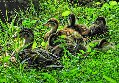 Photograph - Mama And Babies by Kathi Isserman