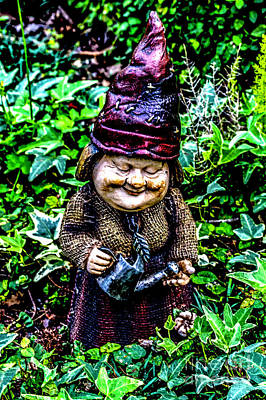 Photograph - Mama Gnome by Ken Frischkorn