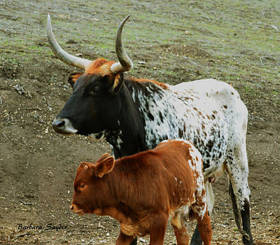 Steer Painting - Mama Longhorn And Baby 2 by Barbara Snyder