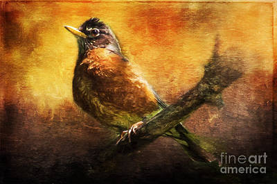 Painting - Mama Robin At Sunrise  by Christina VanGinkel