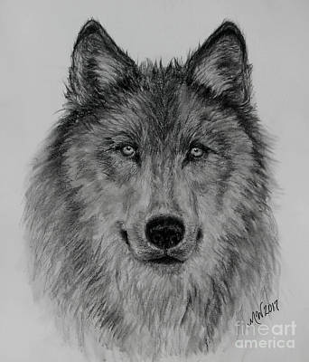 Drawing - Mama Wolf by Michelle Wolff