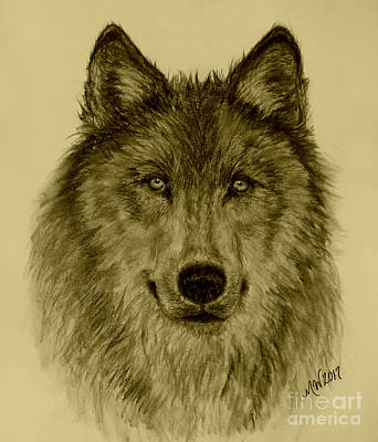Drawing - Mama Wolf Original by Michelle Wolff