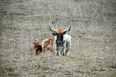 Longhorn Pasture Painting - Mamma And Baby Longhorns by Barbara Snyder