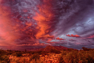 Photograph - Mammary Clouds by Charlie Alolkoy