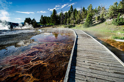Photograph - Mammoth Hot Springs Boardwalk by Crystal Wightman