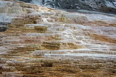 Photograph - Mammoth Hot Springs by Jennifer Ancker