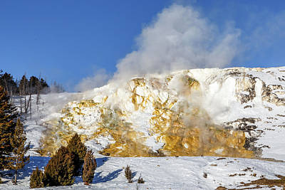 Photograph - Mammoth Hot Springs by Robert Caddy