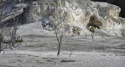 Photograph - Mammoth Hot Springs Upper Terrace by Nadalyn Larsen